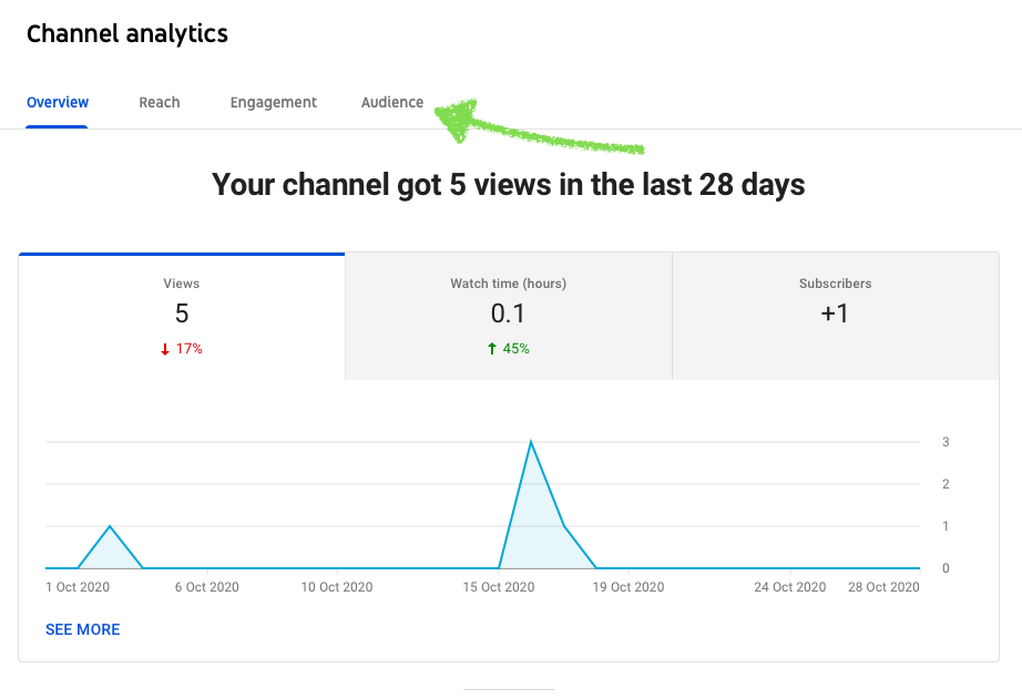 Channel subscriber analytics