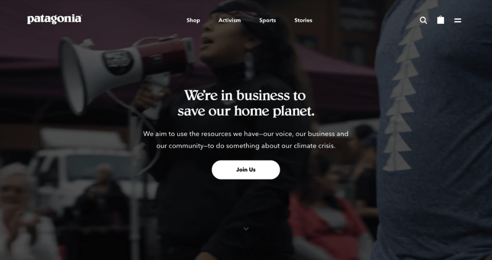 Patagonia's website reflects their sustainable marketing.