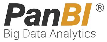 PanBI analytics logo