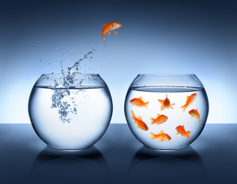 Two fishbowls against the blue background. One goldfish is jumping from the left fishbowl to the right one where the rest of the fish are.