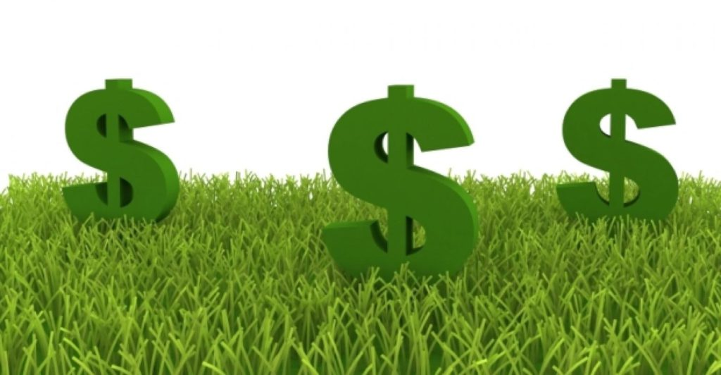 Image of grass with three dollar signs on top.